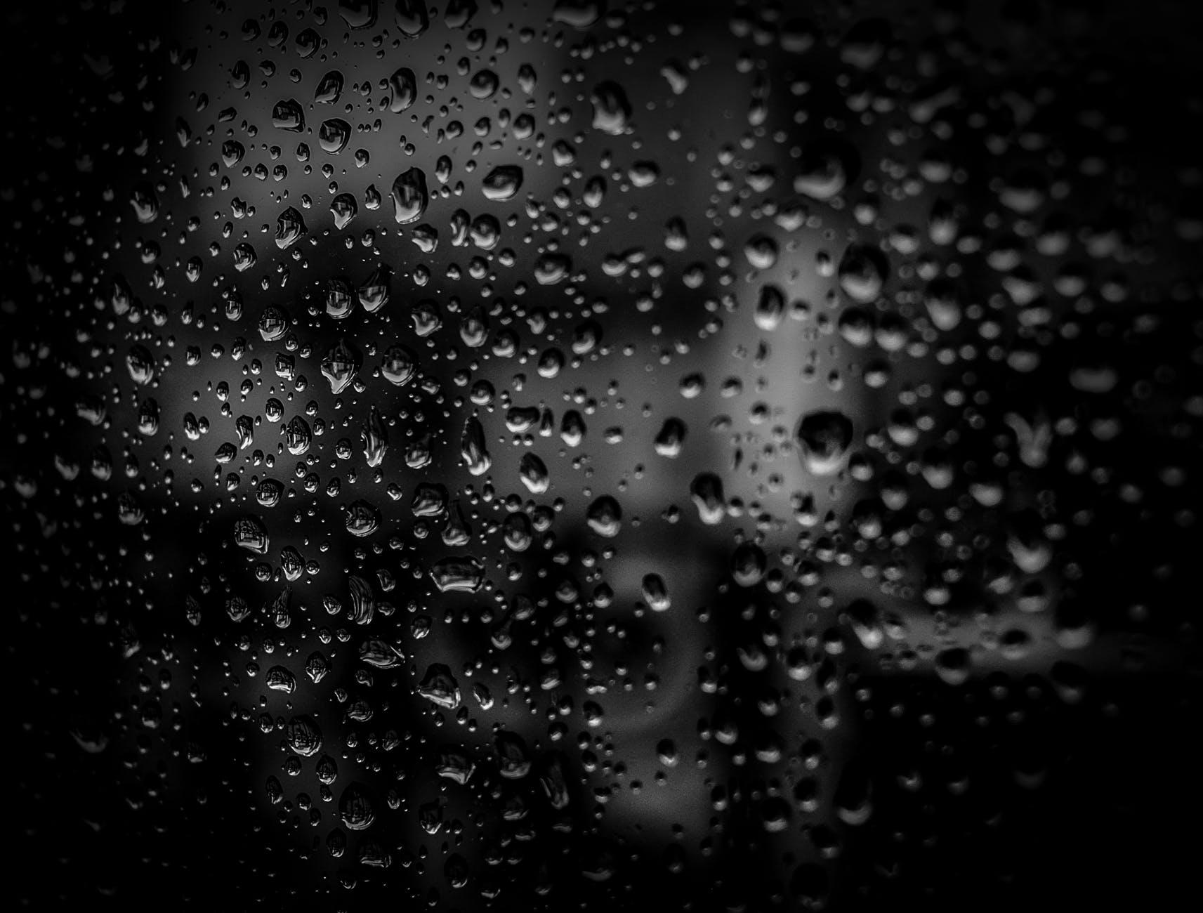 black close up dark dew